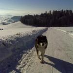 Schnee-Tour (Biglen)