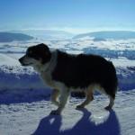 Tour im Schnee (Biglen)